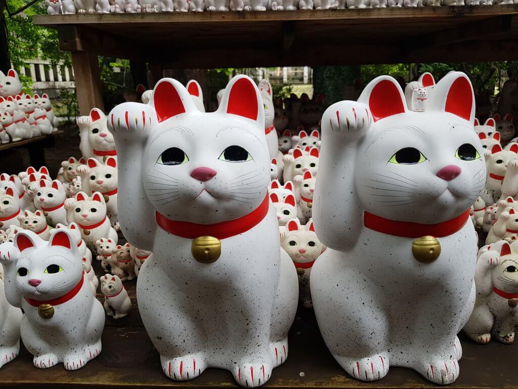 chats japon